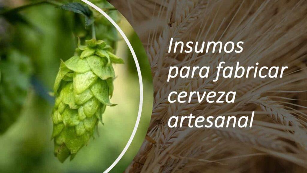 Insumos para fabricar cerveza artesanal